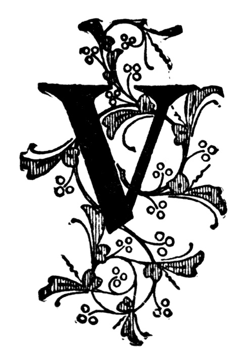 Letter with V's on Pinterest | Letters, Initials and Alphabet