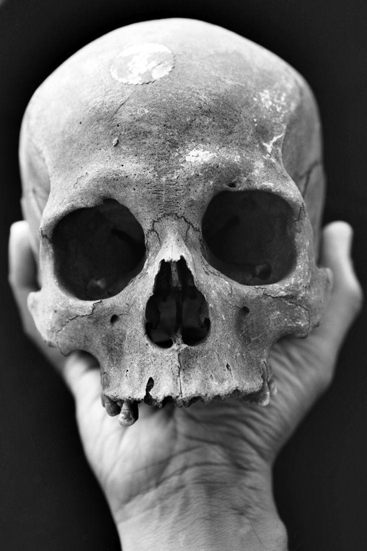 сумская картинки всяких черепов уакари