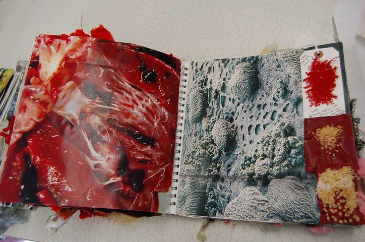 A level Textiles; Durham High School for Girls, Jenni Sneddon