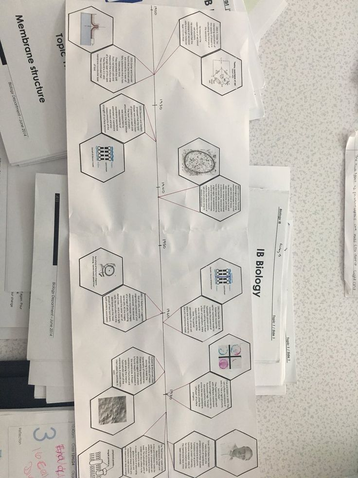 "Lindsay Langworthy on Twitter: ""Yr12 HL Bio, using hexagons to explain the falsification of membrane structure. 👍 work I 🤔 @JESSScienceDept @BiologyIB #JESSRealWorld https://t.co/o75eirmOlH"""