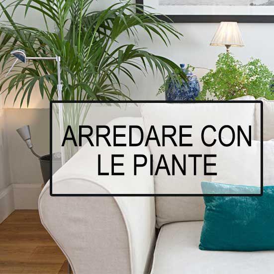 Necessiti di dare una rinfrescata alla casa? Farlo con le piante da interno contribuisce a dare un senso di vivacità al tuo ambiente oltre che a migliora l'aria che respiri!