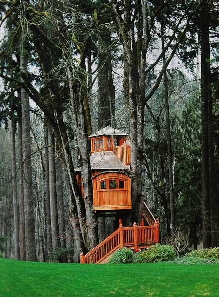 Future Tree Houses 89 best b&b tree houses images on pinterest | treehouses
