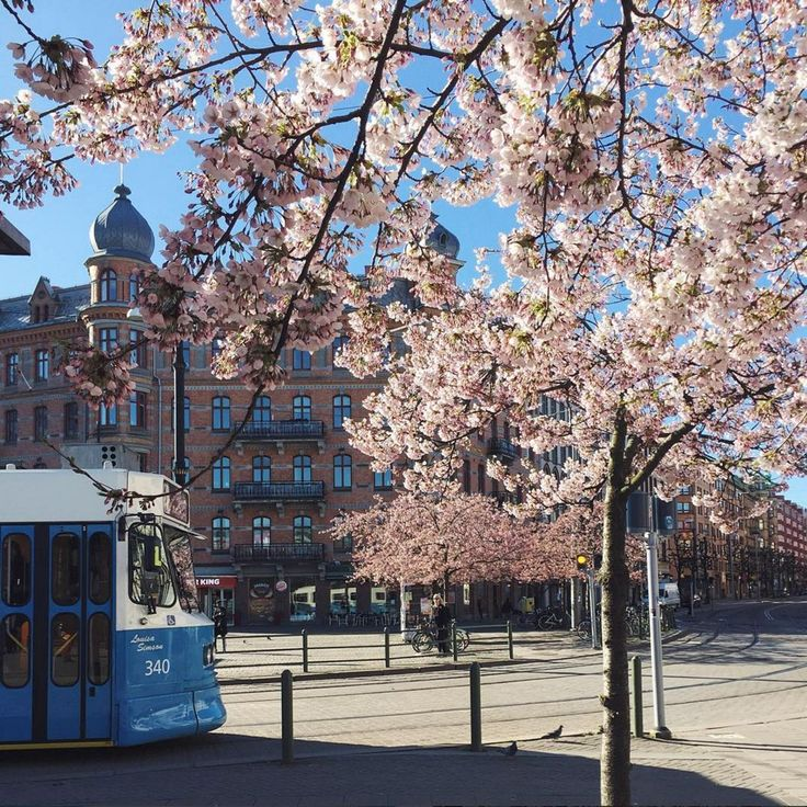 Gothenburg, SwedenAlthough Stockholm makes for a great visit, consider the…