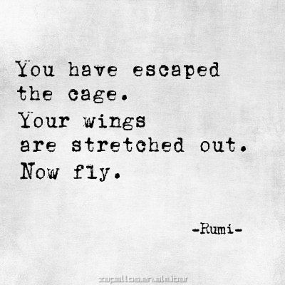 """""""You have escaped the cage. Your wings are stretched out. Now fly."""" - Rumi. Wisdom quotes and inspirational quotes. These words of wisdom can be helpful to qive you strength, bring wisdom into your life and to create more love. For more great inspiration follow us at 1StrongWoman."""