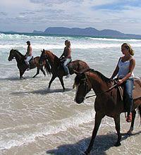 Cape Town Horse Riding