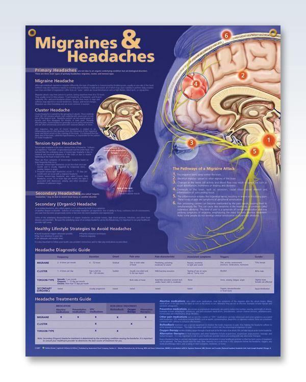 Migraines & Headaches 20x26 #headachechart