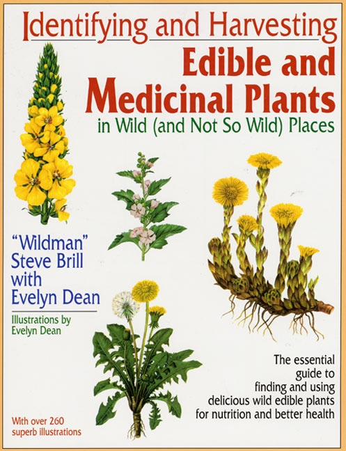 Edible Plants In Your Backyard Part - 19: 217 Best Medicinal Plants U0026 Wild Edibles ? Images On Pinterest | Healing  Herbs, Medicinal Herbs And Holistic Healing
