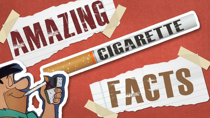 Interesting Cigarette Facts   Published on Nov 29, 2013     Bet you didn't know, Cigarette edition!  Learn the 10 most unknown, interesting, cool, and all together radical facts about Cigarettes and smoking cigarettes.