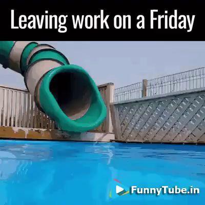 Happy Friday GIF - https://funnytube.in/happy-friday-gif/