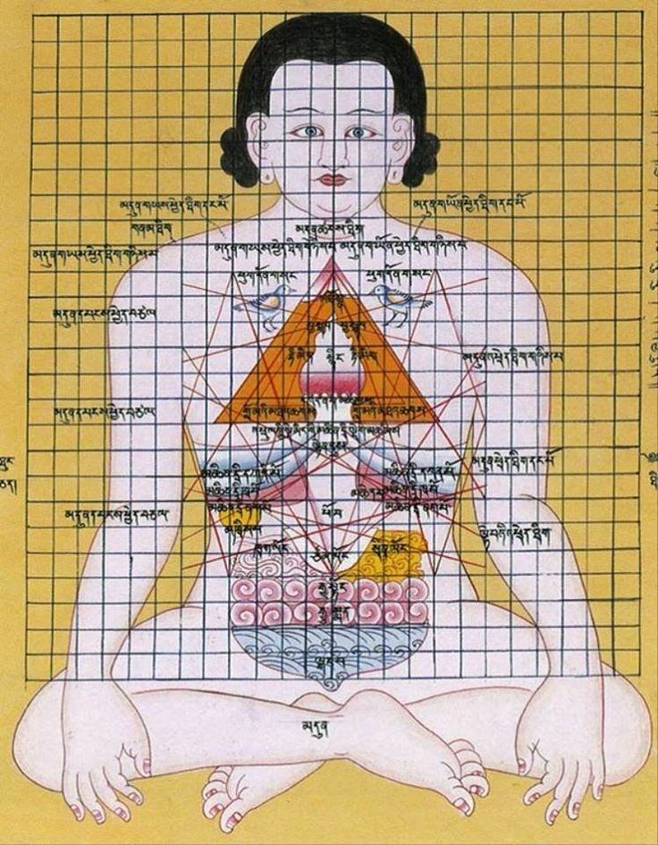 Çin tıbbına göre, insan vücudundaki beş iç organda zehirli maddeler birikir, bu zehirli maddelerin birikmesi, vü cutta belirtiler bırakır....