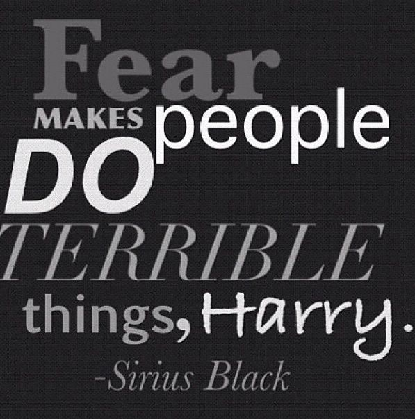 Harry Potter Quotes Wallpaper: Best 25+ Sirius Black Quotes Ideas On Pinterest
