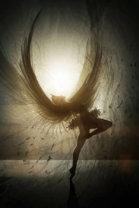 www.graceful-lily-holistic-healing.com