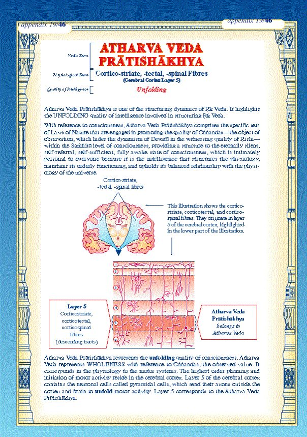 atharva veda | Atharva Veda represents wholeness with reference to Chhandas value. It ...