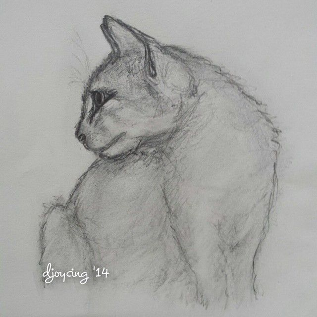 Just made this one to go into my journal #cat #cats #catlover #pencil #drawing #artlovers #art #artaddiction #artwork #artsy #artistic #myart