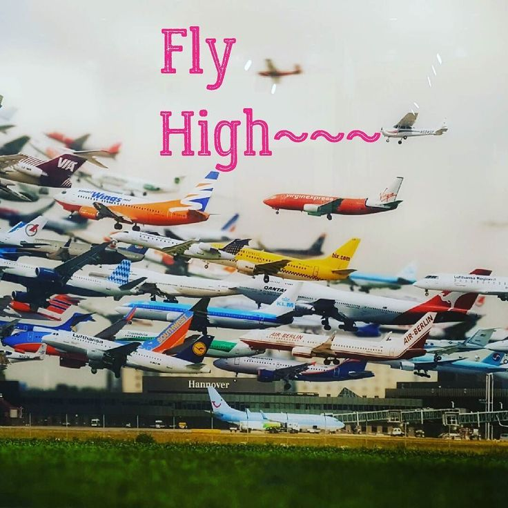 Sunday morning #flyhigh#photography #instagood #exhibition #anonymous