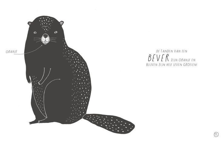 In beeld: Zweedse illustratrice bundelt wonderbaarlijke feiten over dieren
