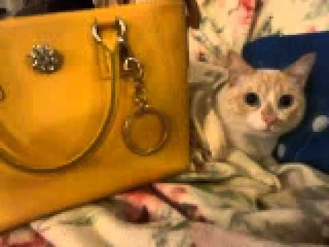 Candy Bag una delle ultime creazioni di Le Train Bleu Mode