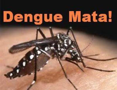 Piedra On Line.-: Dengue: A ponerse los pantalones de una vez...