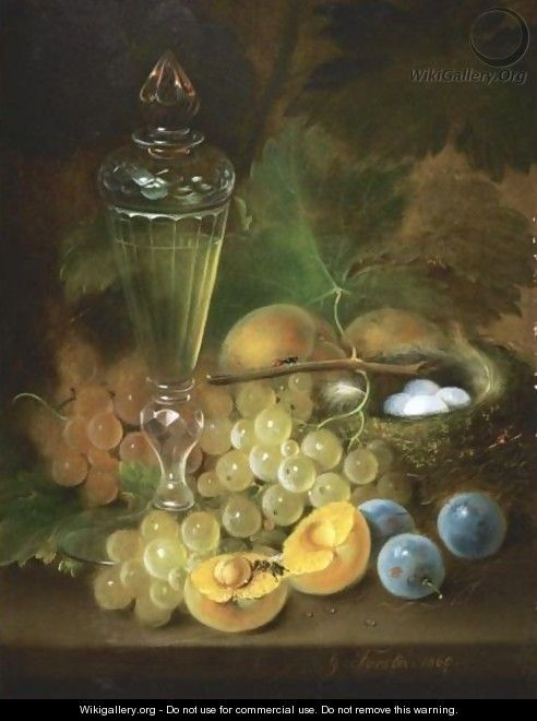 Still Life With Grapes And Nest - George Forster