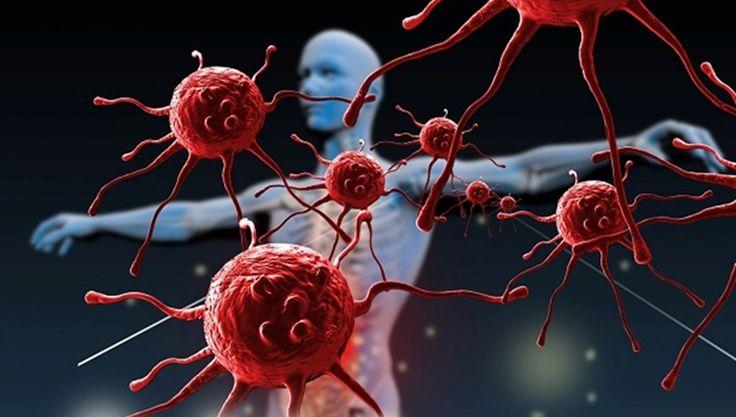 Uma das coisas mais importantes para uma boa saúde é ter um sistema imunológico forte. Dessa forma, seu corpo luta e vence ameaças como vírus e bactérias, impedindo o surgimento de doenças. Mas, com o estilo de vida moderno pouco saudável e o consumo gigantesco de alimentos industrializados, o nosso sistema imunológico se torna cada vez mais fraco ao longo do tempo. Mas tem uma novidade bem interessante. Um grupo de cientistas da Universidade do Sul da Califórnia (USC), Estados Unidos…