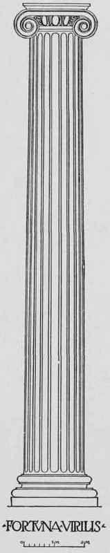 Entasis-Of-The-Roman-Column-0800199.jpg 159×800 pixels