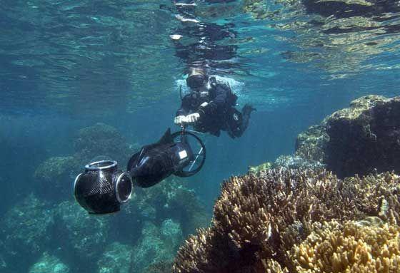 """Sumérgete en la Gran Barrera de Coral: primeras imágenes bajo el agua en Google Maps - Google Maps Goes Diving, Provides """"Seaview"""" Of Great Barrier Reef, Hawaii and Philippines"""