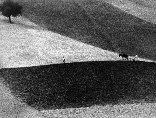 Tuscany, Italy  Gianni Berengo Gardin, 1958