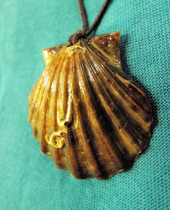 Handmade real scallop seashell pendant with dark earthy tones.