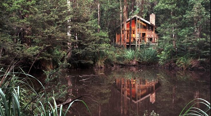 Lodge Woodlands Rainforest Retreat, Narbethong, Australia - Booking.com