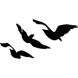 Divergent Tris Raven Tattoo Flying Birds Vinyl Wall Decal Sticker (BLACK, 22 Inches x 43 Inches)