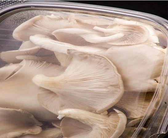 SETAS DE LA SABANA Hongos, champiñon, orellanas y shiitake.