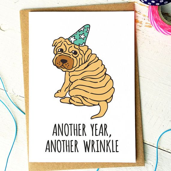 Funny Birthday Card  Friend Birthday Card  by FinchandtheFallow