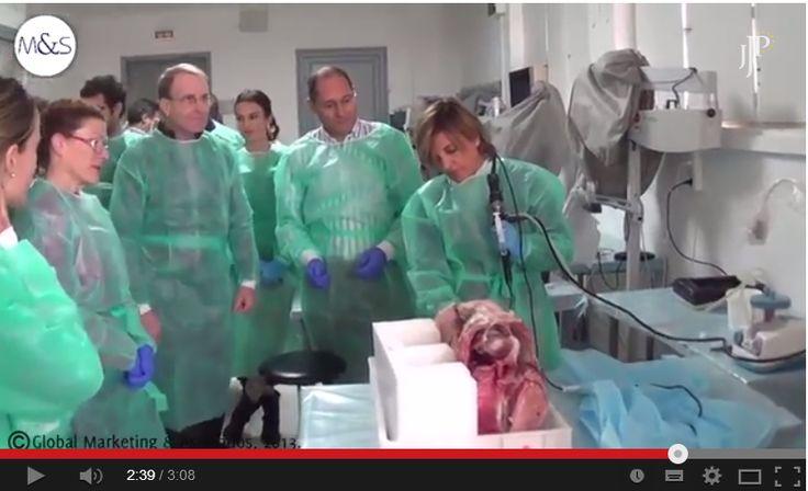 Vídeo sobre el IV Curso de Emergencias Otorrinolaringológicas de la vía aérea y explicación de Emilio Juan de Mingo, del Servicio de ORL del Hospital Virgen Macarena de Sevilla