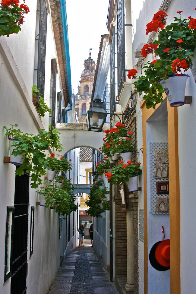 If You Go Anywhere in May, Go to Córdoba, Spain - Young Adventuress
