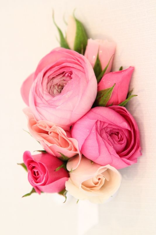 20 best Corsages images on Pinterest Prom flowers Prom corsage