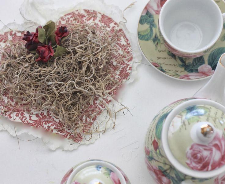 Corações de papel com musgo espanhol