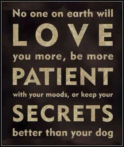 Gotta love dogs. Unconditional love. Quotes Pinterest ...