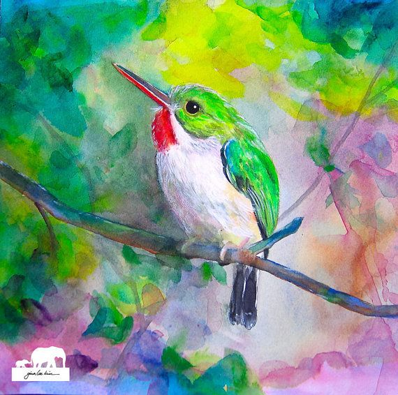 Watercolor Art Print. Cute little Puerto Rican Tody by GinaLeeKim