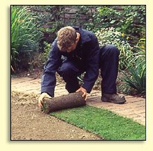 http://www.easylawn.co.uk Easylawn grow and supply quality cultivated lawn turf. Easylawn have been turf suppliers for 30 years and are dedicated to providing a quality service and great value. Easylawn Thingehill Court  Withington Hereford HR1 3QG