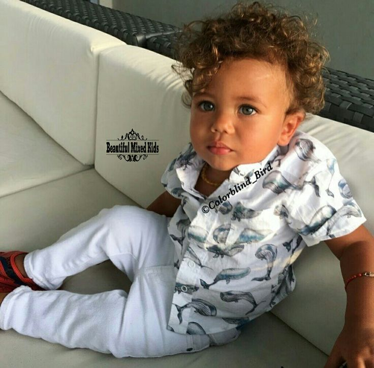 Leo - 1 Year • Russian, Chinese & Jamaican ❤
