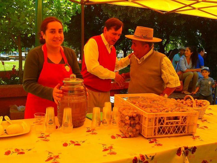 Frutilla Blanca de Puren/Contulmo, Una delicatessen top MUNDIAL.-  by: Migo