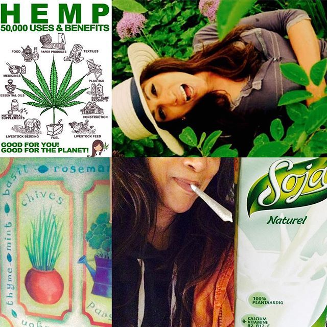♻️✅. BEAUTY & the WEED!! GIVEAWAY!! Giveraway, Giveraway now!  Ahahaha! Must be the green stuff!! LINK IN MY GANJA GARDEN!  Dig sum up lol! •••••••••••••••••••••••••••••••••••••••••Anyways, So only Top left pic taken From Google! Happy EARTH DAY!!! New Generation Beauty & Wellness. Good for you, me and for our PLANET!! HEMP!  Did you know?  50 000 USES & BENEFITS! 1 is my Natural Medication right now!  Pls note I do not SMOKE but this is now My legal PAINKILLER. Ooohhh it's ...