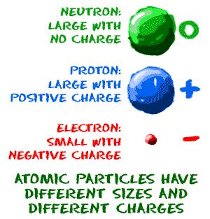 Protons carry a positive charge, neutrons carry a neutral charge, and electrons carry a negative charge.