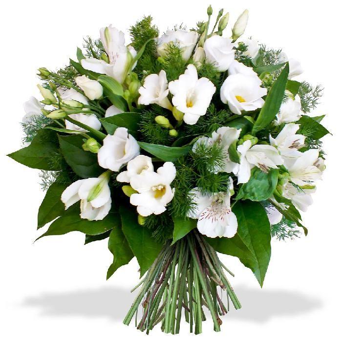 Картинки цветы алле