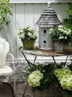 charming birdhouse surrounded by begonias and hydrangeas