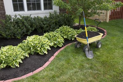 A year-round blanket of organic mulch material makes for an almost labor-free garden, the article includes information on planting, bed preparation, creating organic mulch and when to mulch.