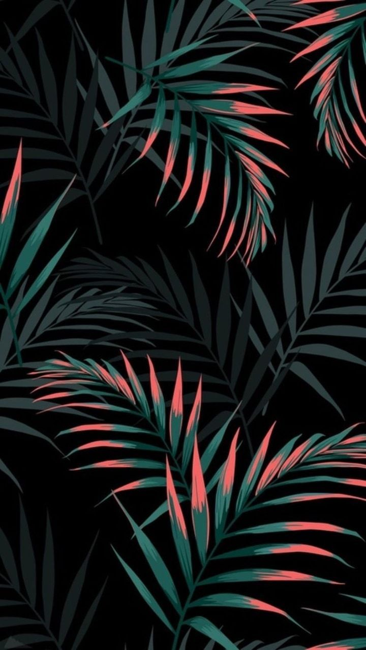 Summer Tropical Background : summer, tropical, background, Wallpaper, Summer, Tropical, Phone, Backgrounds, Leaves, Iphone,, Graphic, Wallpaper,