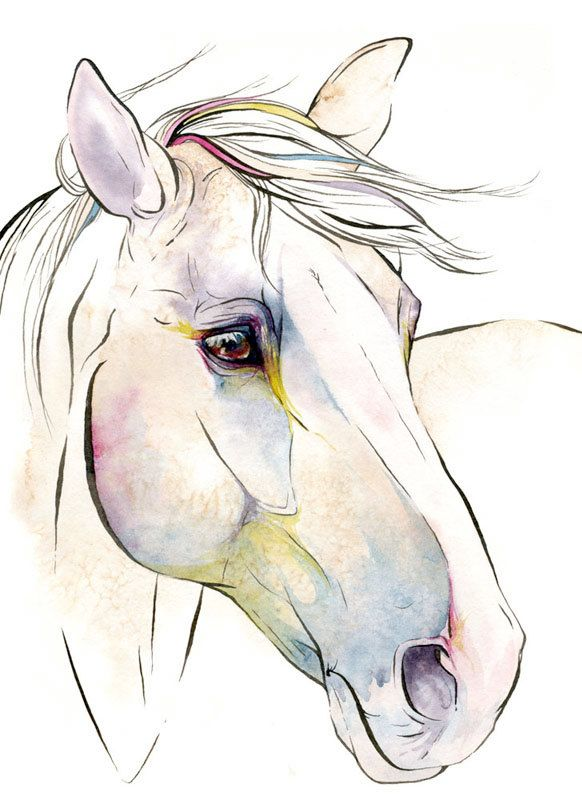 "'Horse Art: ""DesignsbyDannie""' - Flattered that Likit Products shared my watercolor and ink painting ""July""!"
