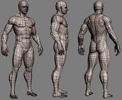 body topology - Buscar con Google