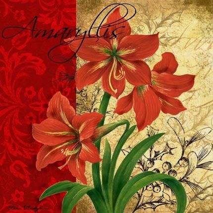 17 best images about scrapbook paper christmas on for Amaryllis deco